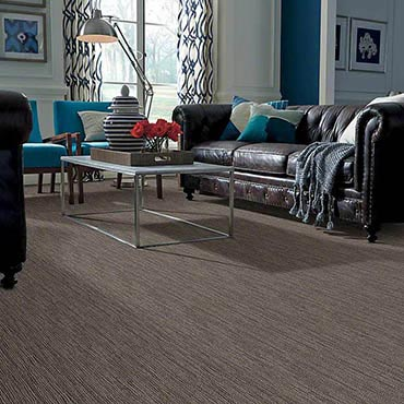 Anso® Nylon Carpet | Collinsville, IL