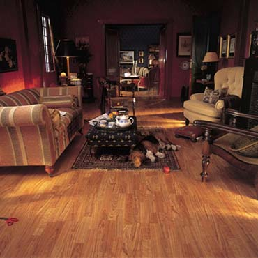 Alloc Laminate Flooring | Collinsville, IL